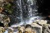 Virginia 2011 - Doyles Falls Trail 043