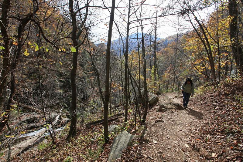 Virginia 2011 - Doyles Falls Trail 082