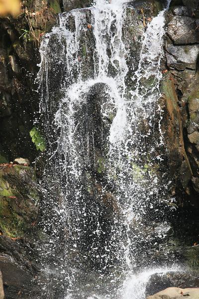 Virginia 2011 - Doyles Falls Trail 045