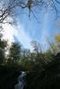 Shenandoah Park - Jones Run Falls Trail 072