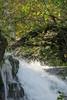 Shenandoah Park - Jones Run Falls Trail 080