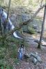Shenandoah Park - Jones Run Falls Trail 085