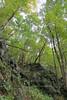 Sheandoah Park - South River Falls Hike 23