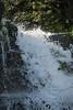 Shenandoah Park - Jones Run Falls Trail 075