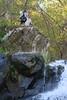 Shenandoah Park - Jones Run Falls Trail 061