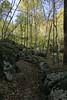 Shenandoah Park - Jones Run Falls Trail 104