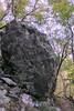 Shenandoah Park - Jones Run Falls Trail 026