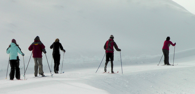 The crew on classic skis following Lisa on skate skis