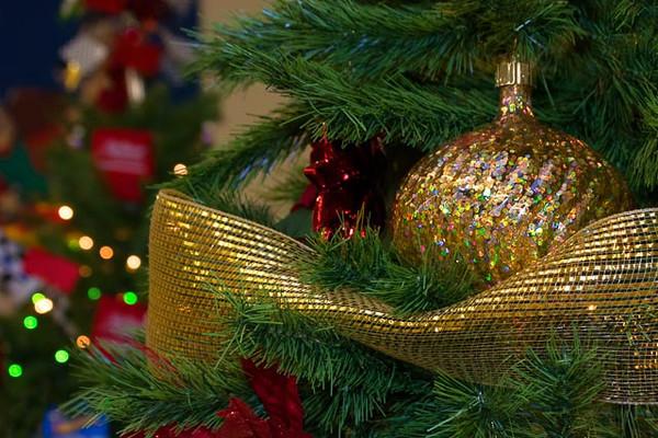 11/2013:  at the We Care Christmas Tree Display, Kokomo, IN