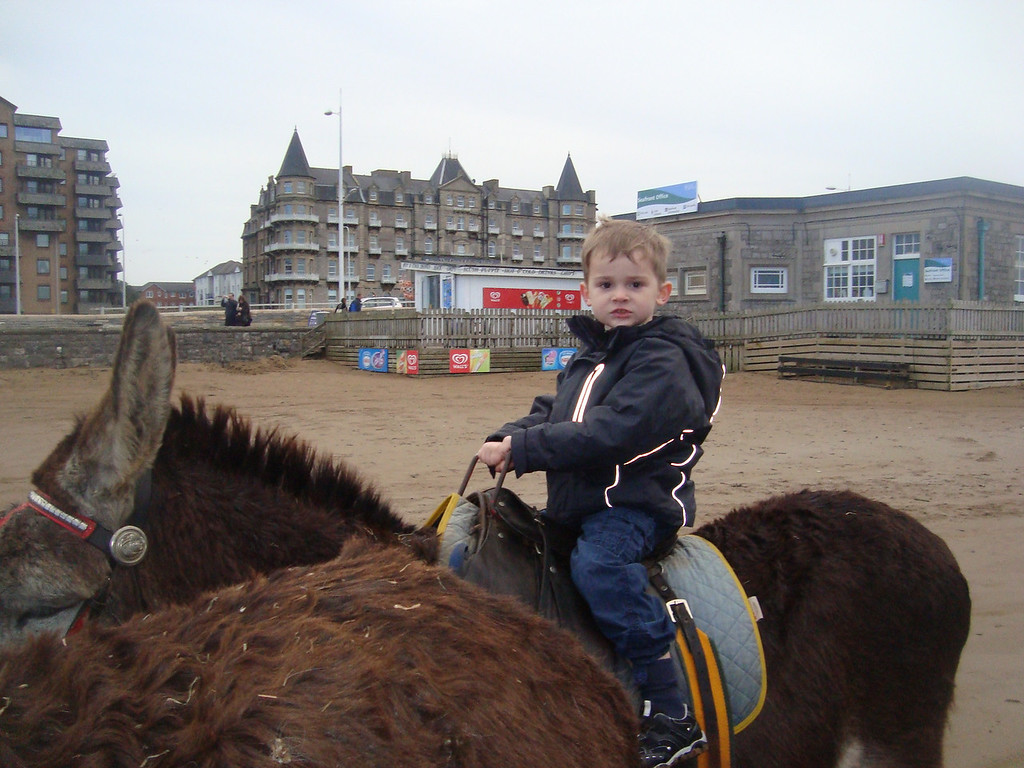 Donkey ride on the beach or Prince Charming on his trusty steed!