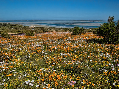Langebaan, South Africa