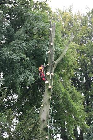 Studley Royal Park<br /> 20 September 2016