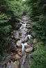 New Hampshire 2014 - The Flume Area 207