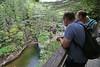 New Hampshire 2014 - The Flume Area 198