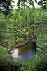 New Hampshire 2014 - The Flume Area 197