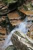 New Hampshire 2014 - The Flume Area 171