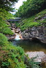 New Hampshire 2014 - The Flume Area 232