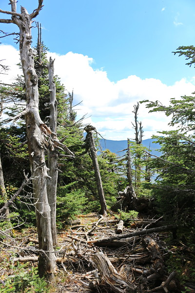 New Hampshire 2014 - Tram Ride Up Cannon Mountain 062