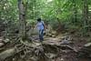 New Hampshire 2014 - Cascade Brook Trail Hike 118