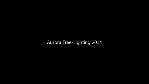 Winter Lights Christmas Tree lighting in Aurora, Ill 11-21-14