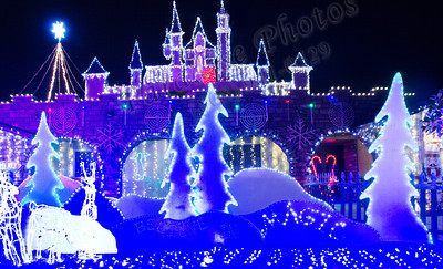 Winter Wonderland lights 1383