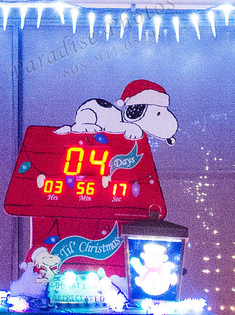 Snoopy in lights 121912