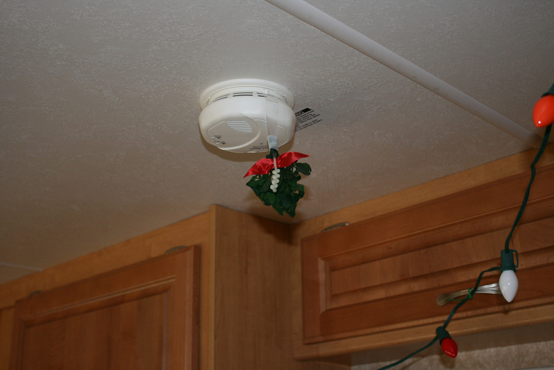 Our misltoe in the RV, hanging from the smoke detector.