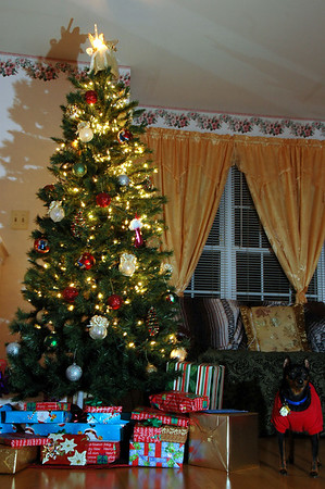 Xmas tree 2007