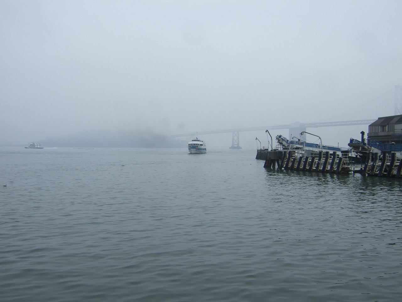 A ferry comes in from the fog. We were at the Ferry Terminal having lunch.