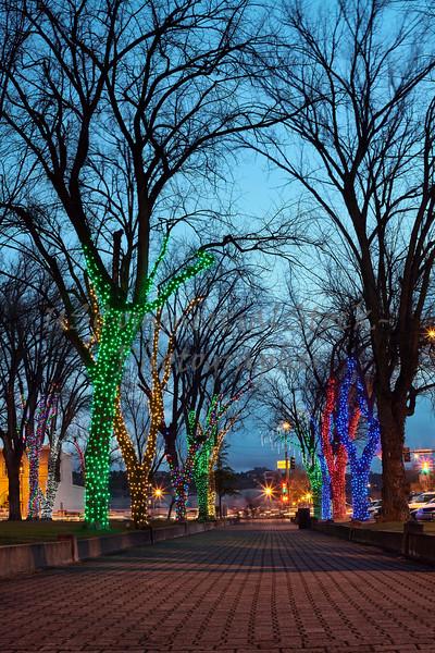 Christmas tree lights at night town people walking