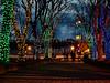 Christmas tree lights at night people walking