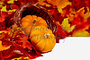Two Mini Pumpkins with Fall Colored Leaves in a Horn of Plenty