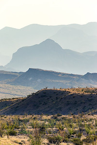 Desert Layers - Big Bend