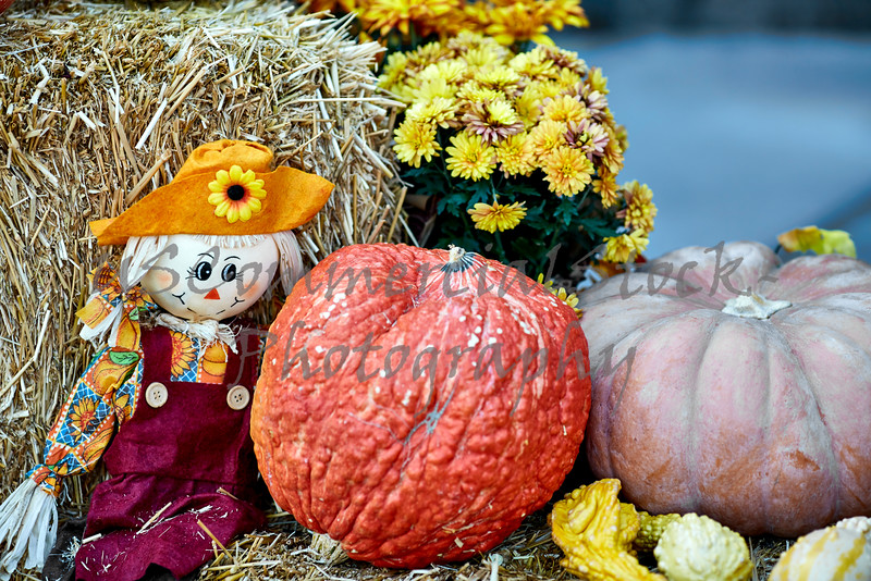 Straw Doll sitting on Bale of Straw with Squash and Flowers
