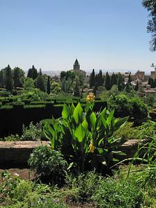 IMG_2627 Generalife Gardens, Alhambra, 13 July 2010 SM