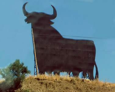 IMG_2543 Osborne Bull en route to Granada July 2010 SM