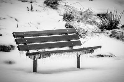 fringed bench black and white