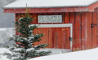 snowy flower shop