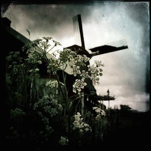 Molens and Windmills