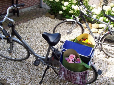 A bicycle loaded with flowers is a common sight in Holland.  These two large bundles cost about $12 at the market.