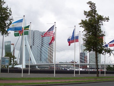 "The ""Swan"" bridge in Rotterdam."