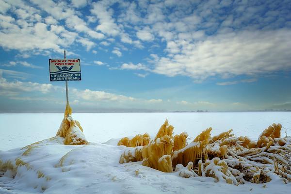 Cold Shore PB9884.2021
