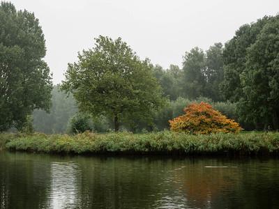 Woods & Lake