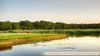 Naardermeer-1090614_tonemappedSchoberPhotography