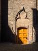 Sunlit Door (Ridderzaal)