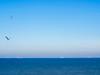 Red & Blue Ships on Blue Ocean