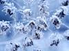 SnowyDayGH3NLSchober_1000343