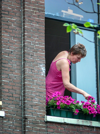 Kemmerer___Tending flowers from an Amsterdam apartment