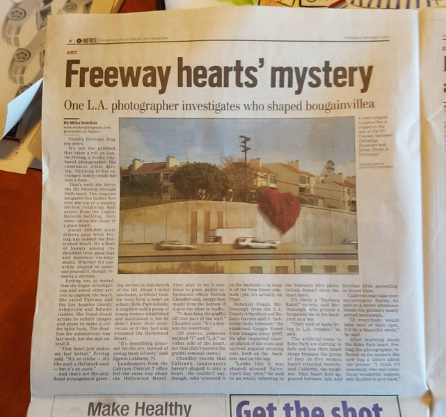 Freeway Heart in Daily News