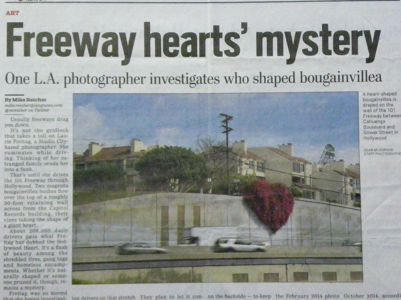 Hollywood Heart-One L A  Photographer investigates